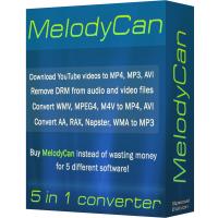 convert wma to mp3 using realplayer